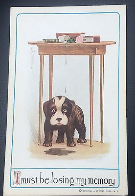 1900s Vintage Reinthal  Newman Postcard Dog I Must Be Losing My Memory # 221 NOS