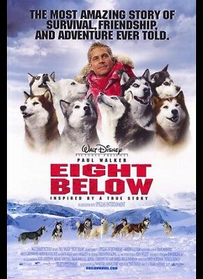 Paul Walker Eight Below 27x40 Double Sided Original Rolled Movie Poster