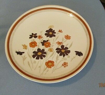 Royal China (USA) ~ Jeanette Sunshine  ~ Two (2)  Dinner Plates
