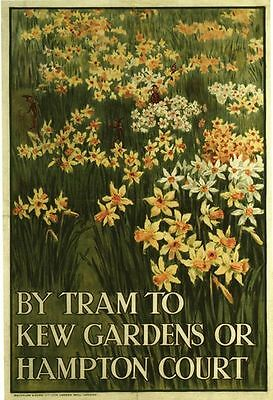 Vintage 1912 By Tram to Kew Gardens Daffodils Poster A3 Print