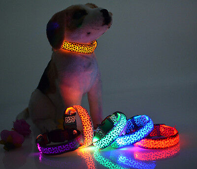Puppy Pet Leopard LED Flashing Collar Dog Cat Night Light Safety Necknet Collars