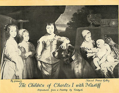 Children Of Charles 1 With Mastiff Nice Old Dog Print From 1934