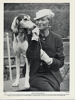 Saluki Named Dog And Lady Owner Old Original Dog Print From 1935