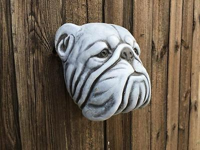SALE SALE Bull Dog Wall Plaque - Latex ONLY Garden Ornament Mould SALE SALE