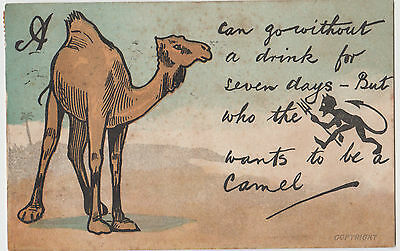 Thirsty Camel Beer advertising postcard from Australia 1906 stamp & postmark
