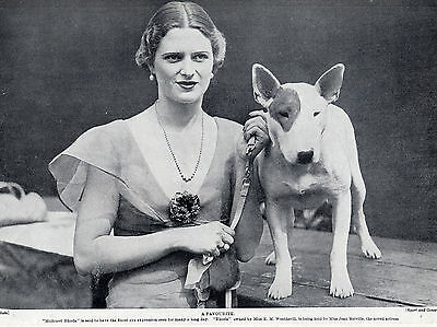 Bull Terrier And Actress Jean Melville Lovely Original Dog Print Page From 1934