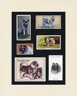 Keeshond Mounted Set Of Vintage Dog Collectable Cards And Stamps Great Gift