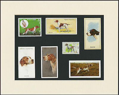 Pointer Mounted Set Of Vintage Dog Collectable Cards And Stamps Great Gift