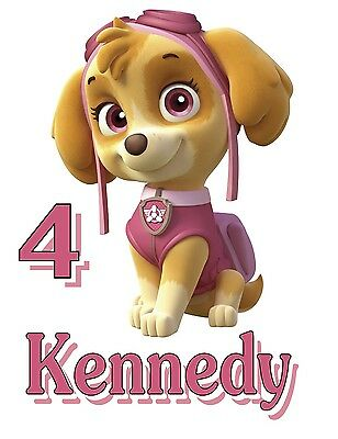 New Personalized Paw Patrol Skye T Shirt Party Favor Birthday Tee Add Name
