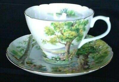 Shelley Woodland Pattern Cup and Saucer 13348 Fine Bone China England   D4
