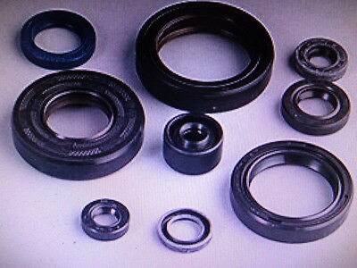 Kawasaki Kx250 2001 2002 2003 2004  Complete Oil Seal Kit   Engine Rebuild