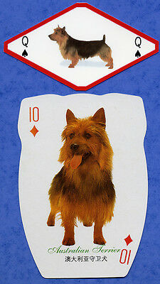 Australian Terrier Two Dog Playing Swap Single Cards Great Gift When framed