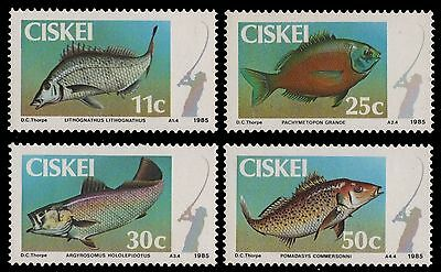 Ciskei 1985 Coastal Angling. Fishes MNH