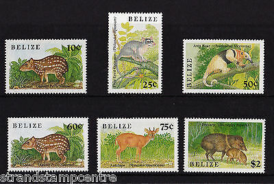 Belize - 1989 Small Animals - U/M - SG 1049-54