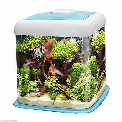 Curvo Blue 12L 12 Litre Aquarium Fish Tank Starter Kit Led System Gold Goldfish