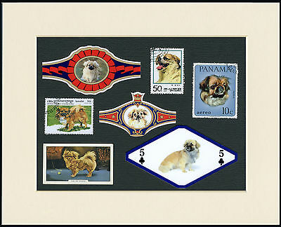 Tibetan Spaniel Mounted Set Of Vintage Dog Collectable Cards Bands And Stamps