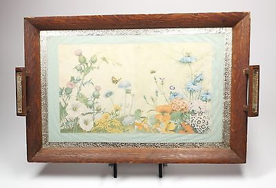 Antique Vtg Wood & Glass Tray or Wall Display Noel Hopking Botanical Litho 18x12
