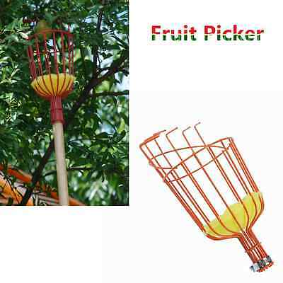Fruit Picker Picking Basket Fresh Orange Apple Pear Peach For Broom Pole Stick