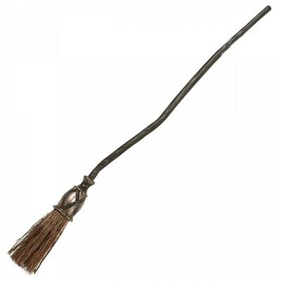 Wicked Witch Broom Quidditch Halloween Costume Fancy Dress