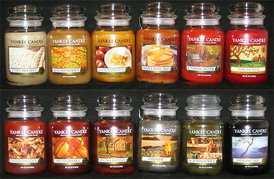 Yankee Candle - (1) 22 oz Jar - FALL SCENTS - MANY RARE & RETIRED!!