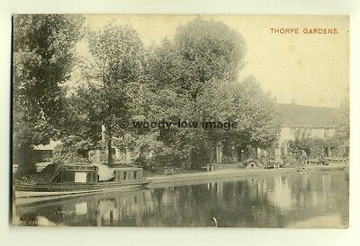 tp6522 - Norfolk - View of Thorpe Gardens and Narrow Boat at Norwich - Postcard