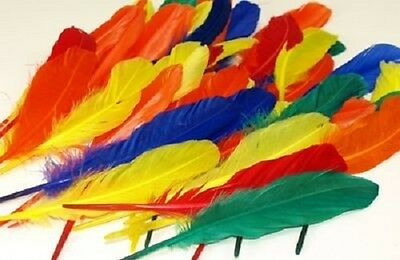 Duck Quill Feathers bright assorted color for carnival headdress Pack of 40