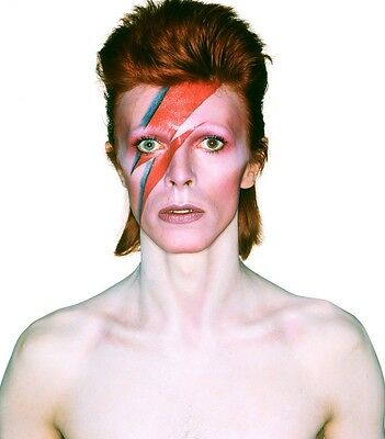 David Bowie Music Legend High Quality 8X10 Photo Photograph Picture
