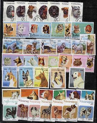 DOGS COLLECTION of 7 ISSUES A12