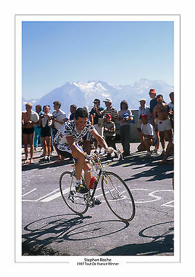Stephen Roche Tour De France 1987 A4 Photo Ireland Cycling