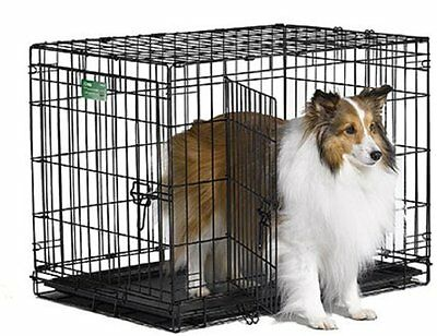 Midwest iCrate Pet Crates Size: 30-Inch w/Divider Style: Double Door Fold Carry.