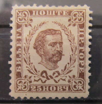 A1556 MONTENEGRO 1893 25n MH*