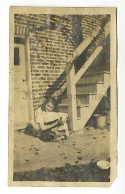 "20th Century Dog - Vintage Vernacular ""Found"" Silver Print Photograph"