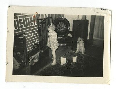 "20th Century Dogs - Vintage Vernacular ""Found"" Glossy Photograph"