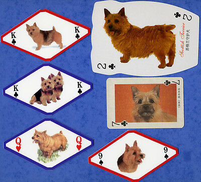 Norwich Terrier Dog Playing Swap Single Cards Great Gift When Framed See Details