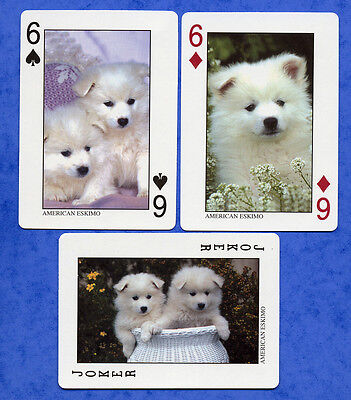 American Eskimo Sled Dog Playing Swap Single Cards Great Gift When Framed