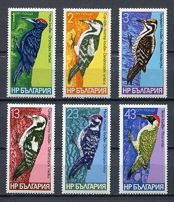33615) BULGARIA 1978 MNH** Woodpeckers Birds 6v