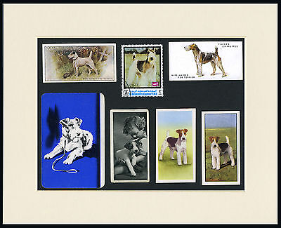 Wire Fox Terrier Mounted Set Of Vintage Dog Collectable Breed Cards And Stamps