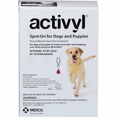 Activyl Pet Once a Month Spot on Topical Flea Treatment for Dogs 44-88 lbs 6Pk