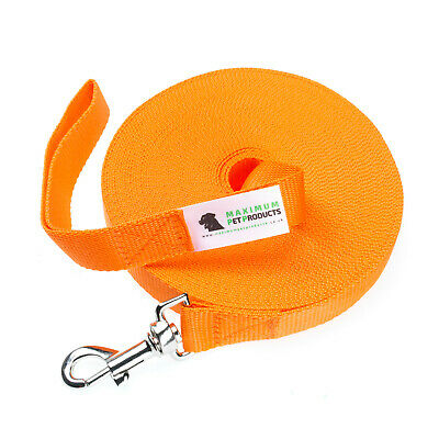50ft Orange Dog Lead & Horse Training Leash. 15m long 25mm Wide Webbing & Clip