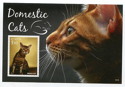 St. Kitts Stamp 2015 Domestic Cats S/s