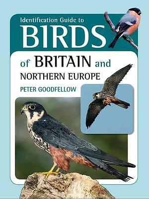 Identification Guide to Birds of Britain and Northern Europe, New Book
