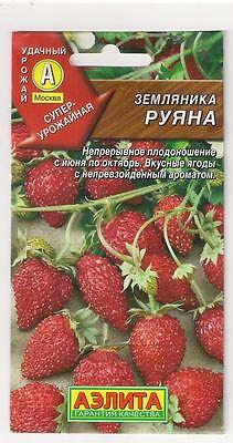 "The seeds of the Russian High Quality.Strawberry ""Ruyan"""