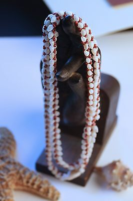 Exotic Niihau shell necklace