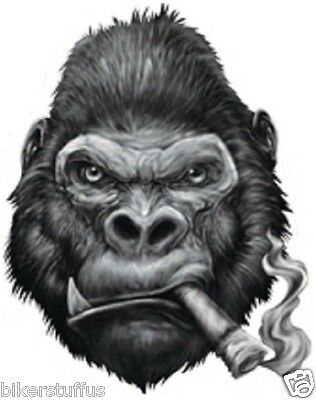 Gorilla Smoking Cigar Bumper Sticker Toolbox Sticker Laptop Sticker Die Cut