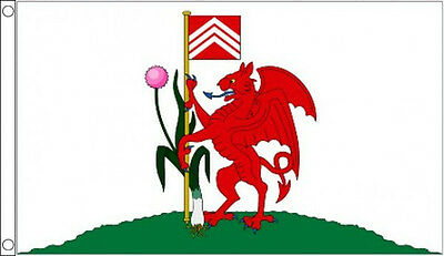 CITY of CARDIFF FLAG 5' x 3' Wales Welsh Flags