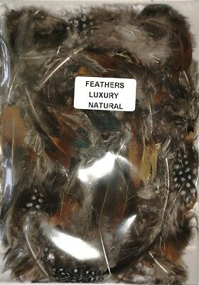 "ASSORTED NATURAL CRAFT FEATHERS 5gm Approx 20-25 pcs 30 >75 mm (1.5 >3.5"") mixed"