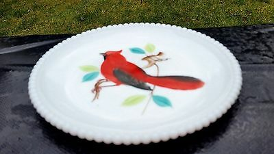 """Hard to Find Beaded Edge 7"""" Salad Plate With Cardinal"""
