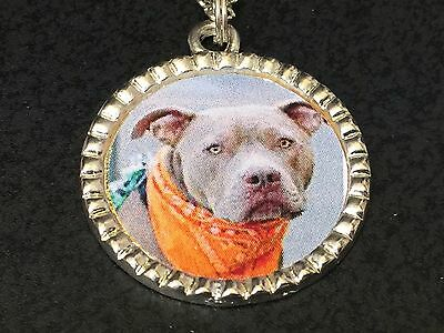 "Dog Pit Bull Grey Charm Tibetan Silver with 18"" Necklace BIN D"