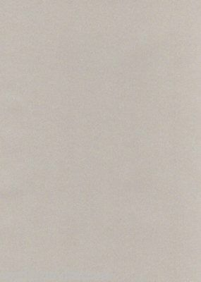 Silver Shimmer Vellum 20 Translucent A4 Paper 100gsm Iridescent for Invitations