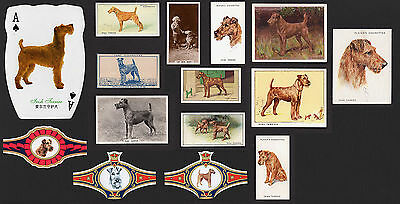15  Original Irish Terrier Collectable Dog Cigarette / Trade Cards And Bands